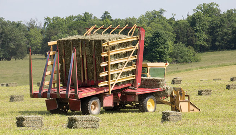 Small square bales rule on this Kentucky farm | Hay and Forage Magazine