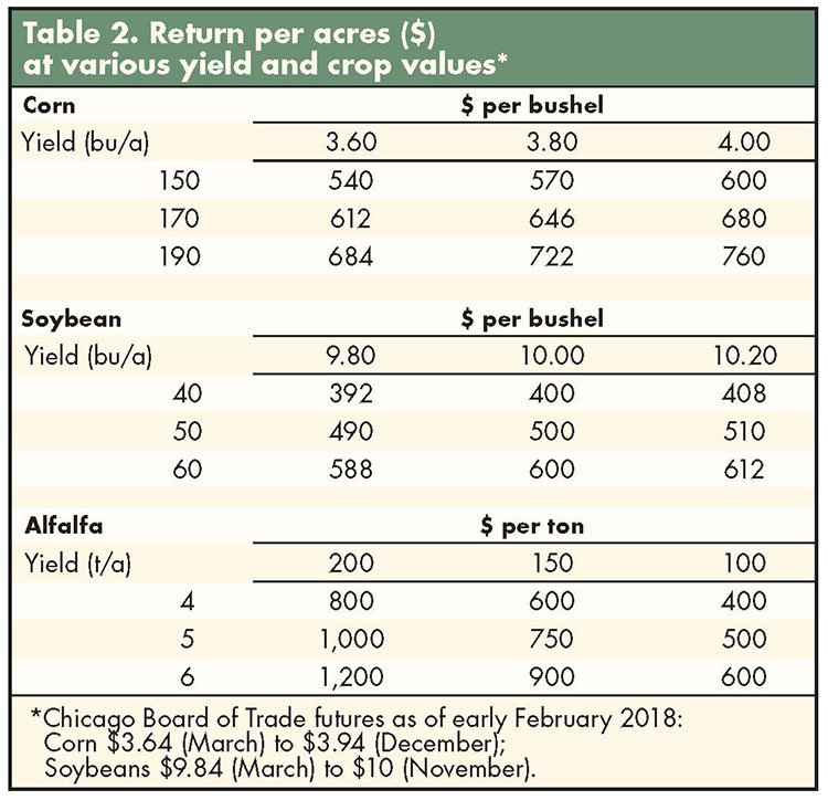 Grains Market Overview