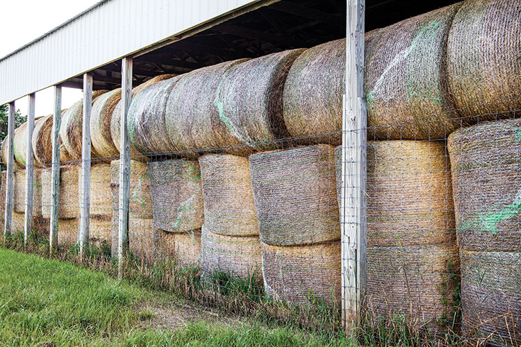 Hay barns can be a profit center | Hay and Forage Magazine