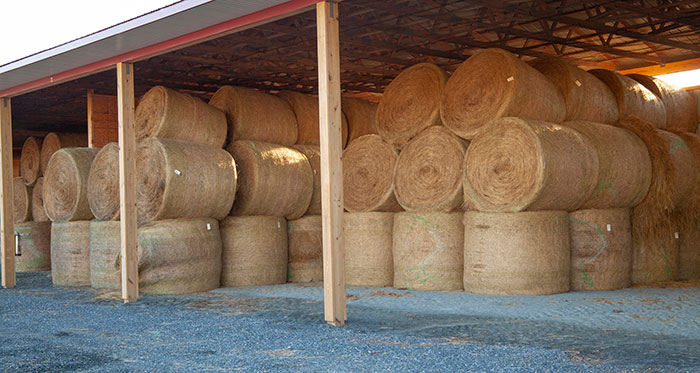 Build a hay barn right the first time | Hay and Forage ...