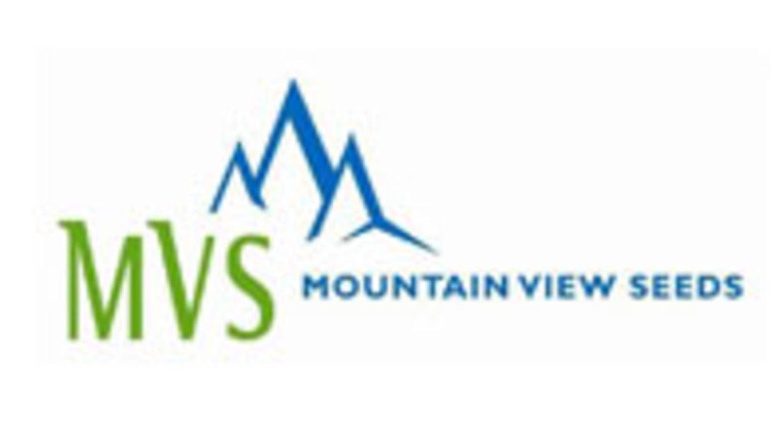 MVS-logo